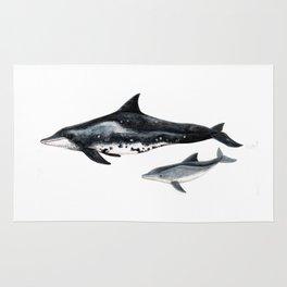 Rough-toothed dolphin (Steno bredanensis) Rug