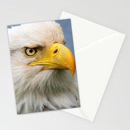 American Bald Eagle Portrait Stationery Cards