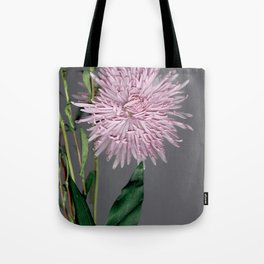 pale pink aster botanical Tote Bag