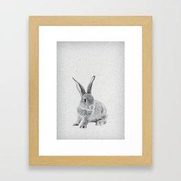 Rabbit 25 Framed Art Print
