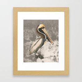 If anyone can, pelican Framed Art Print