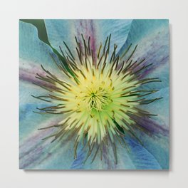 Aqua-Blue Flower With Lilac Accents Metal Print
