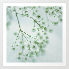 Little Beauties; Art Print
