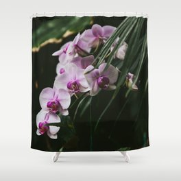 White & Purple Orchids Shower Curtain