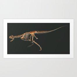 Carnotaurus sastrei Skeleton Study Art Print