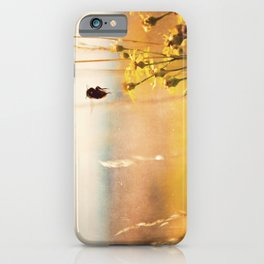 The heat on her back ... bumble bee photograph iPhone Case