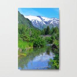 Valley Stream Metal Print
