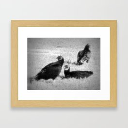 Three Vultures Framed Art Print