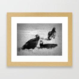 Three Vultures Framed Art Print
