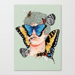 Butterfly Boy Canvas Print