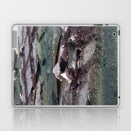 Landscape 3310C Laptop & iPad Skin