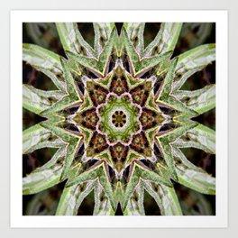 Canna-Mandala Art Print