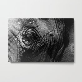 Never Forgets Metal Print