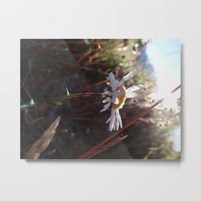 and the flower Metal Print