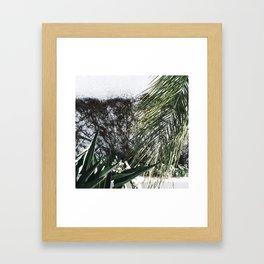 Mossy Framed Art Print