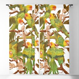 The extinction of the Carolina Parakeet. Blackout Curtain