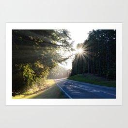 Early morning light Art Print