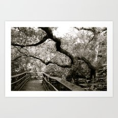 Bridge to ______ Art Print
