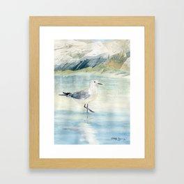 Seagull on the beach Framed Art Print
