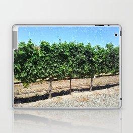 Santa Barbara Vineyard Laptop & iPad Skin