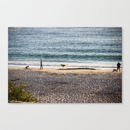 Waves and sand Canvas Print