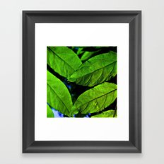 recto verso Framed Art Print