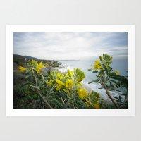 Flower Power - Malibu Art Print