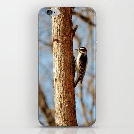Downey Woodpecker iPhone Skin