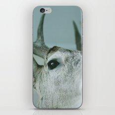 mounted iPhone & iPod Skin