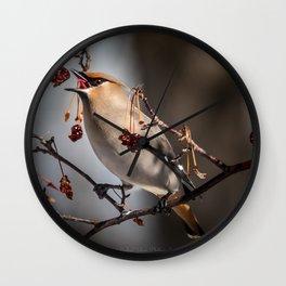 Cedar Waxwing Berry Flip Wall Clock