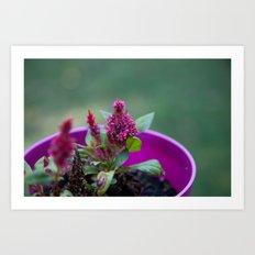 Purple Art Print