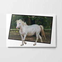 white horse in the farm Metal Print