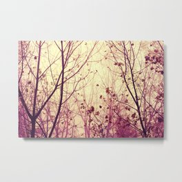 trees - my secret garden Metal Print
