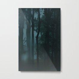 In a magical woods Metal Print