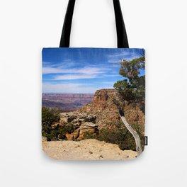 Making Lifetime Memories Tote Bag