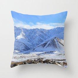 Beautiful Winter Season Landscape Throw Pillow