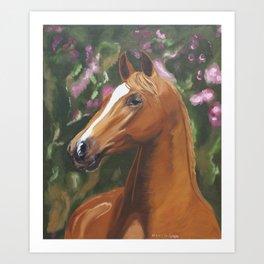 Wonderful horse portrait Art Print
