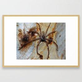 Menacing Huntsman Framed Art Print
