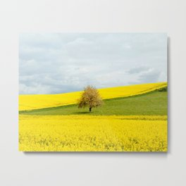 Tree in Yellow Field Metal Print
