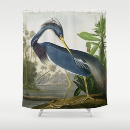 John James Audubon Louisiana Heron Painting Shower Curtain