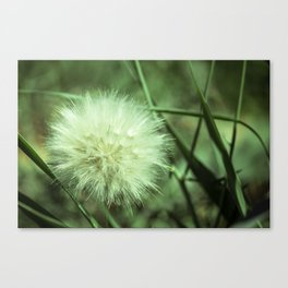 Puffy Day Canvas Print
