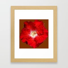 COFFEE BROWN RED & WHITE HIBISCUS FLOWER Framed Art Print