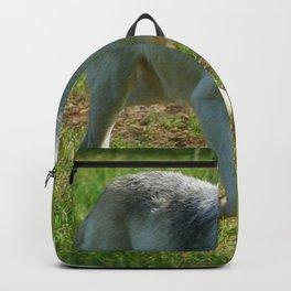 Wolf Wanderer Backpack