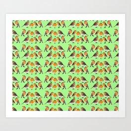 Four Robins Art Print