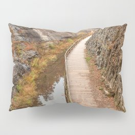 Paw Paw Boardwalk Trail Pillow Sham
