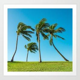 Coconut Palm Trees Art Print