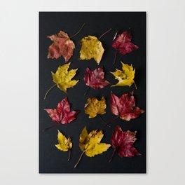 October Typology Canvas Print
