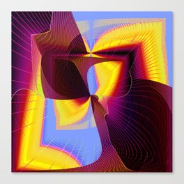 covert symetry Canvas Print