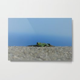 Lizards in Taormina Metal Print