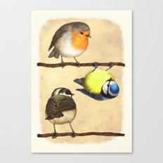 Three Little Birbs - Brown Canvas Print